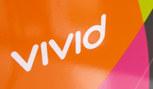 Vivid Consulting